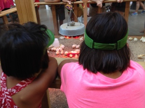 Leah and Gigi observing some baby chickens at the state fair in Des Moines, IA.