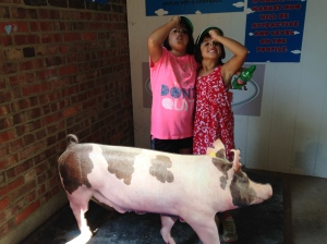 The hog. Iowa's pride and joy. And then there's Gigi and Leah. At the Iowa State Fair in Des Moines.