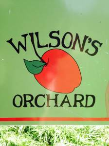 The best part of the year for all your appley goodness! It's fall at Wilson's Orchard 4823 Dingleberry RD NE Iowa City, IA 319-354-5651