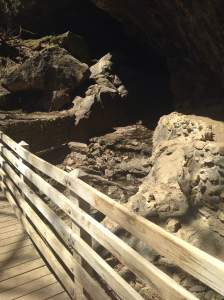 Like frogs, toads and minnows? Maquoketa Caves has those too!