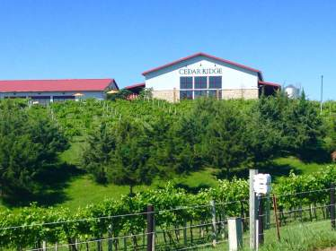 Cedar Ridge Vineyards in Swisher, IA. https://twitter.com/CedarRidgeIowa