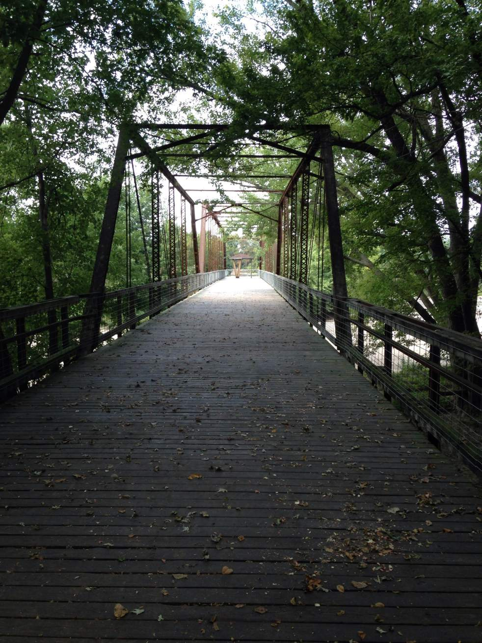 Through the dense woods we stumbled on what we were looking for. The old Saulsbury Bridge. Now serving as a tool of discovery and imagination for Team Goodvin and anyone else loves areas like this. The Cedar River was down on this day and that allowed us to explore under the bridge and along the sandbars. Tell what else you need to fill up your day!