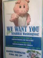 Who can say no to this little piggy! Volunteer your way into RAGBRAI!