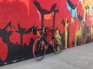 Tulip Town: Orange City!