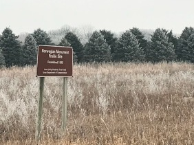 Prairie preserve in Lake Mills, Iowa